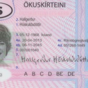 buy Iceland driving license